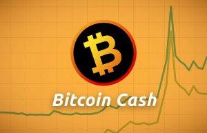 Co-Founder Bitcoin.com bán sạch BTC để mua BCH khiến giá Bitcoin Cash tăng vọt