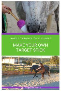 Horse clicker training budget DIY target stick hippologic