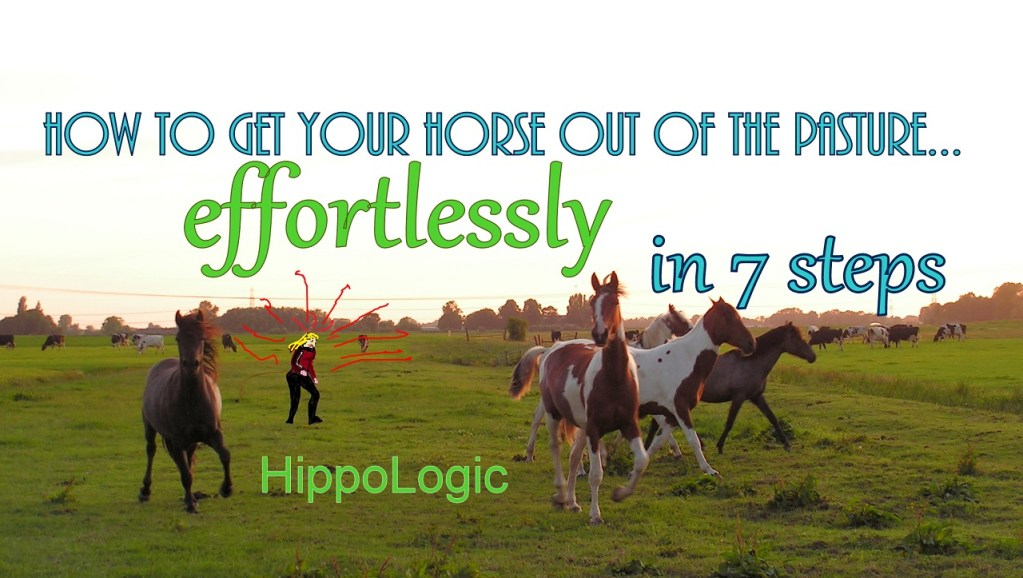 Get your horse out of the pasture effortlessly
