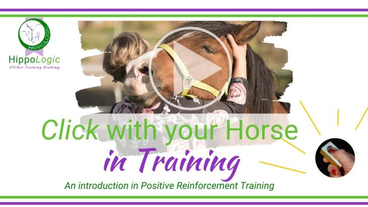 Free online course HippoLogic Clicker With Your Horse in training an introduction in positive reinforcement