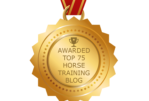 How to become a Top Horse Blogger
