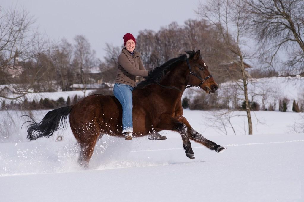 bareback riding, fun