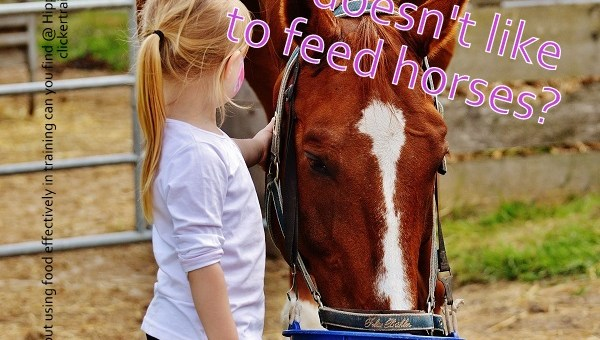 One of the perks of Clicker Training Your Horse is…