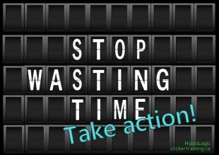 take action_stop wasting time