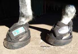 hoofshoes_boots_hippologic_clickertraining