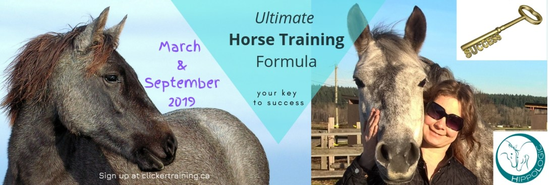 Ultimate Horse Training Formula