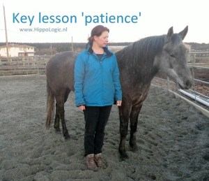 This is what HippoLogic Key Lesson Patience looks like