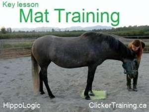 Key Lesson Mat training