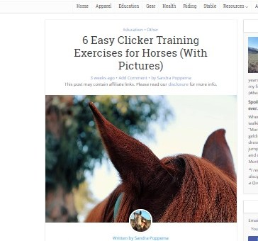 Step-by-step Clicker Training Guide for Horse Rookies