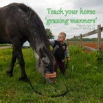 Grass training makes it easier for kids to handle horses