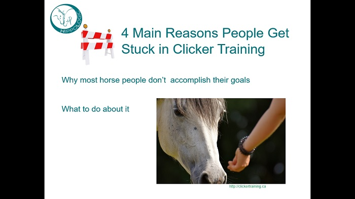 4 reasons people get stuck in clicker training