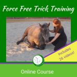 Online course force free trick training Lying down