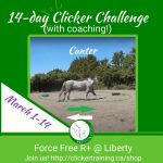Teach your horse to lunge, positive reinforcement style