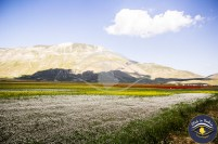 Fioritura Castelluccio di Norcia | Click in Umbria - Turismo fotografico