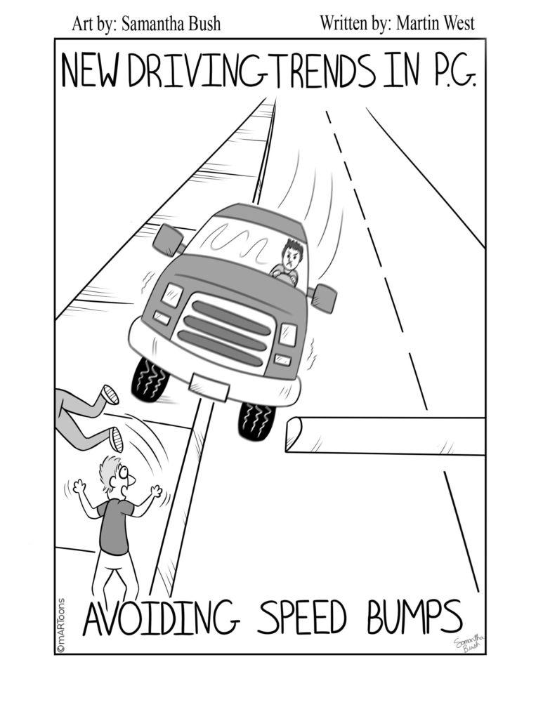 MT#201 Speed Bump