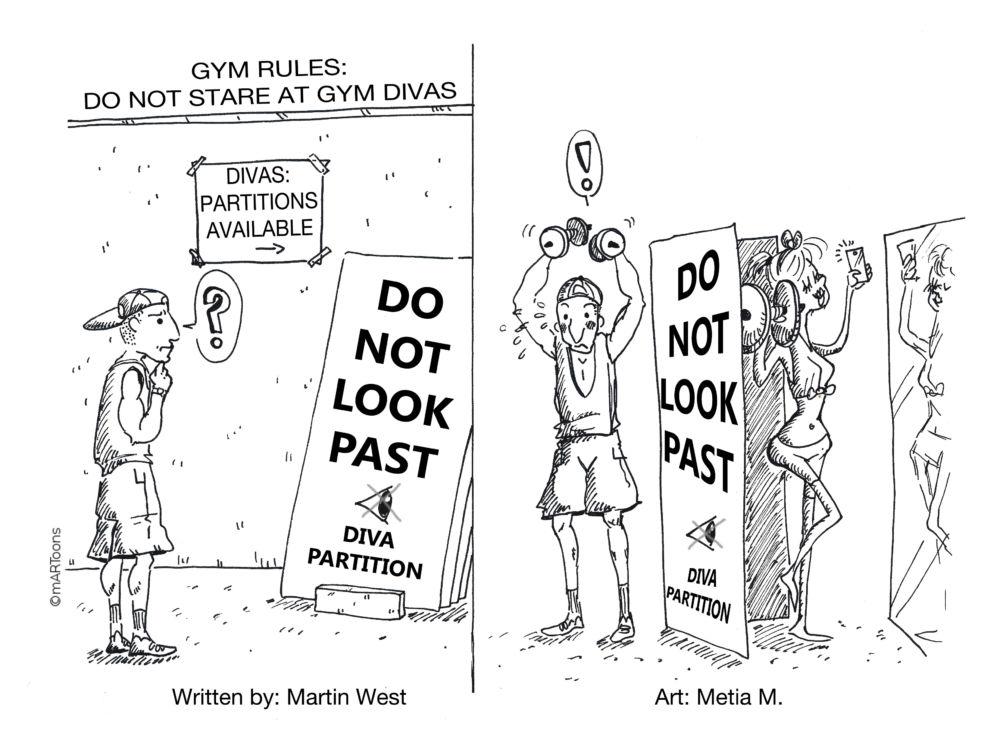 MT#393 Gym Diva Partitions