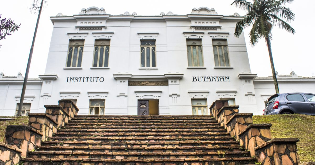 Instituto Butantan oferece cursos e livros sobre biologia e ciência