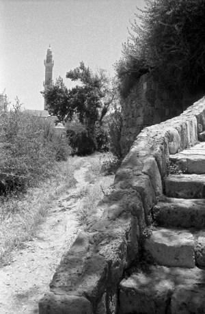 מדרגות ושביל עפר, יפו העתיקה.