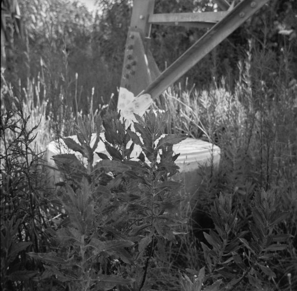 07062015_isolette_Tmax400_133
