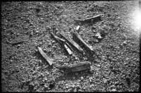 array-of-sticks