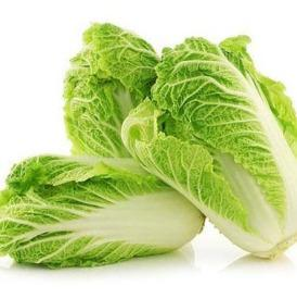 Chinese Cabbage (Nappa Cabbage)