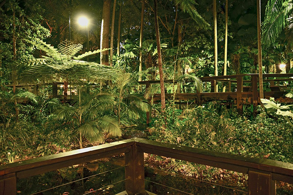 La Foresta Tropicale a South Bank Brisbane