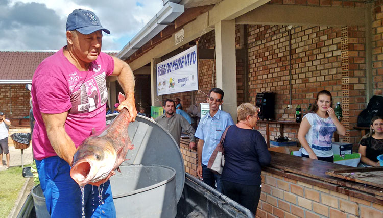 Feiras devem movimentar o comércio de peixes na Semana Santa