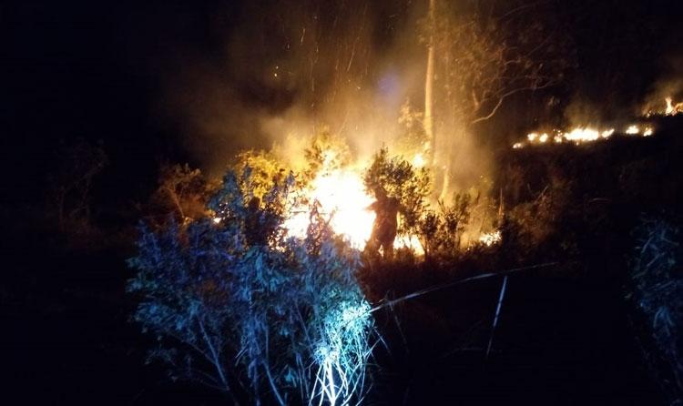 Bombeiros Voluntários combatem fogo em matagal em Sentinela do Sul