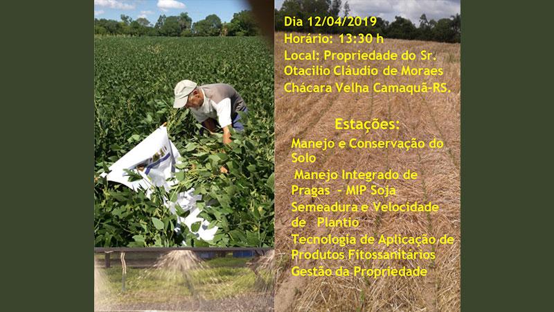 Dia de campo vai mostrar resultados do Manejo Integrado de Pragas e doenças nas lavouras