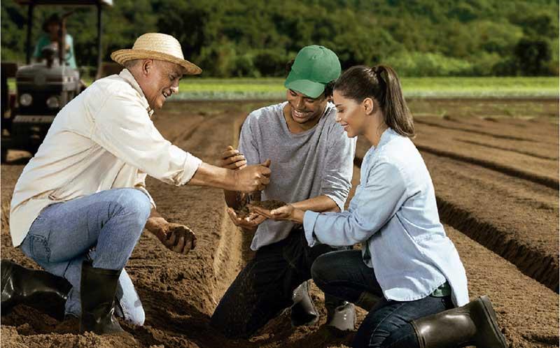 Sicredi aumenta oferta de crédito rural do Plano Safra 2019/2020