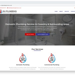 Small Business Hosting & Domain Renewal