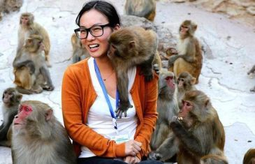Viral Pic: Monkey Business!