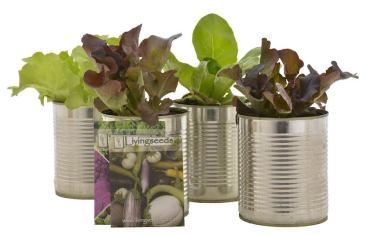 Waste Free Living with Lifestyle Home Garden