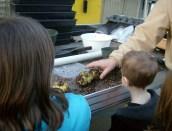 Kids Club visit to Greenhouse Spring 2014