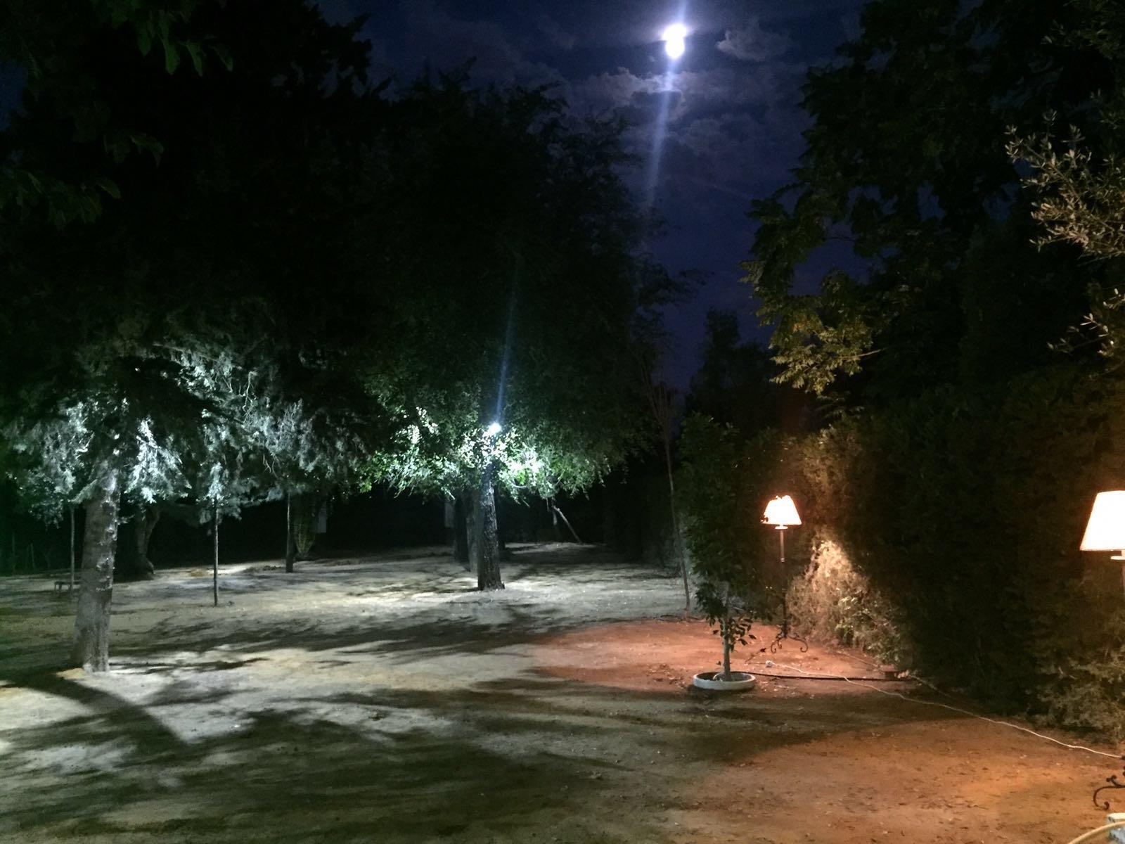 Iluminacion para jardin amazing faro cross lmpara baliza for Iluminacion solar para jardin