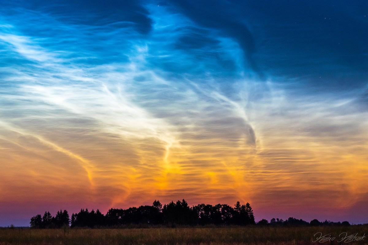 Polar Mesospheric Summer Echoes