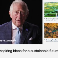 Sustainability and Innovation for the Future Now Showing at RE:TV