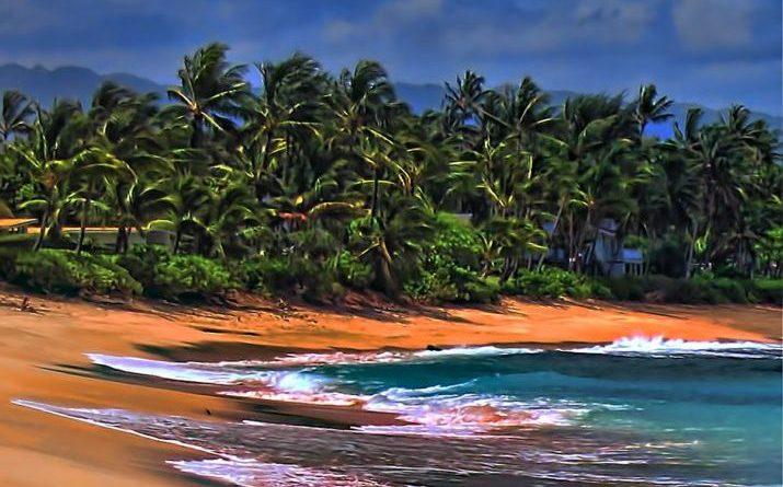 Hawaii among states implementing Paris goals