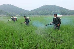 Pesticide Sparyers