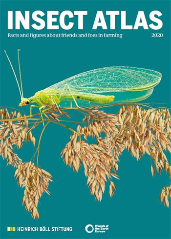 Agribusiness drives severe decline of essential insects