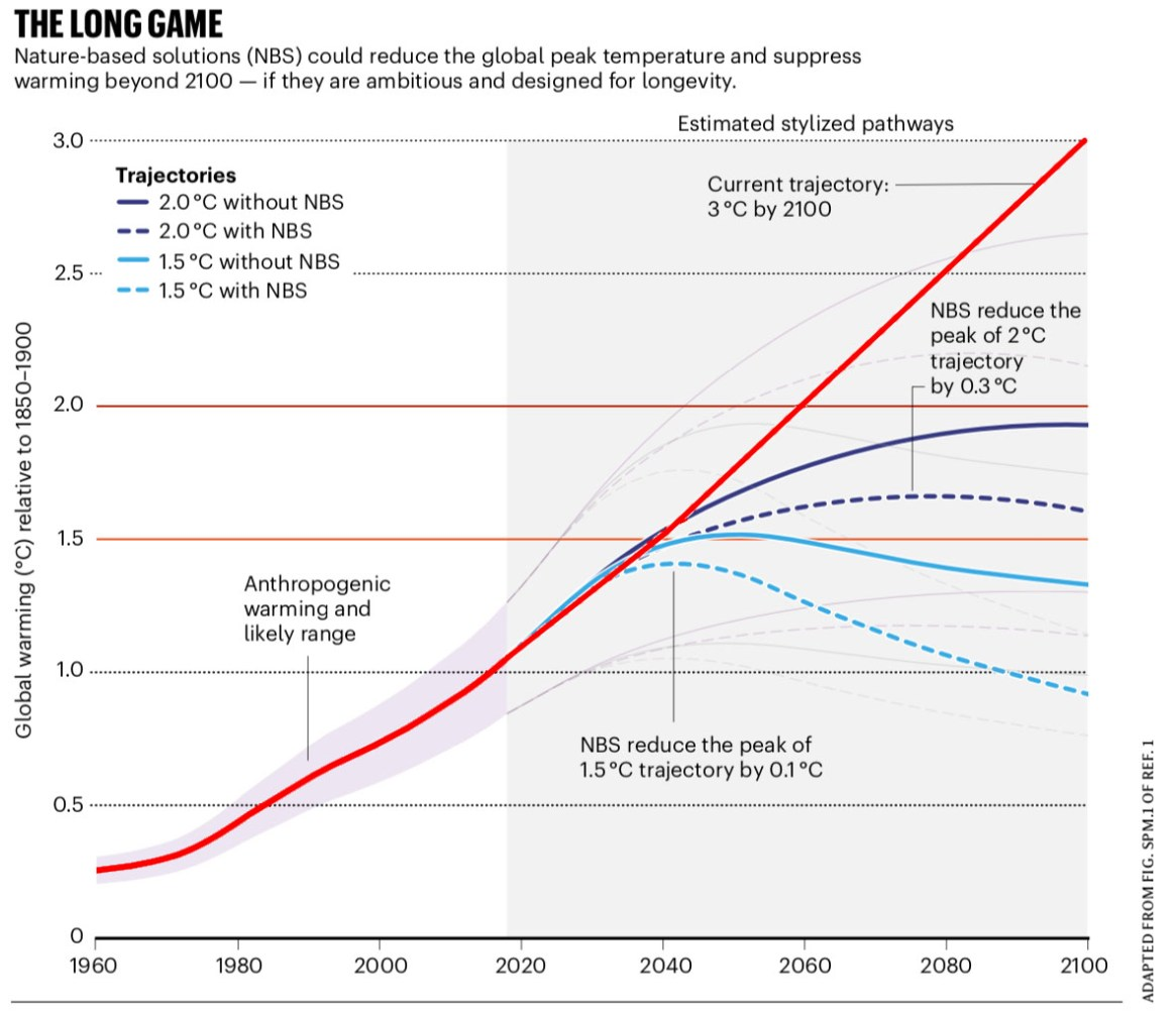 Fig. 1: The solid dark blue line show emissions targets to keep us below 2C. The solid light blue line show emissions targets to keep us below 1.5C. However, in reality, we are on track for temperatures reach 3C by 2100 (red line). The blue dotted lines show the amount we can suppress warming if Nature Based Solutions (NBS) are ambitious and designed for longevity. (Image: Nature)
