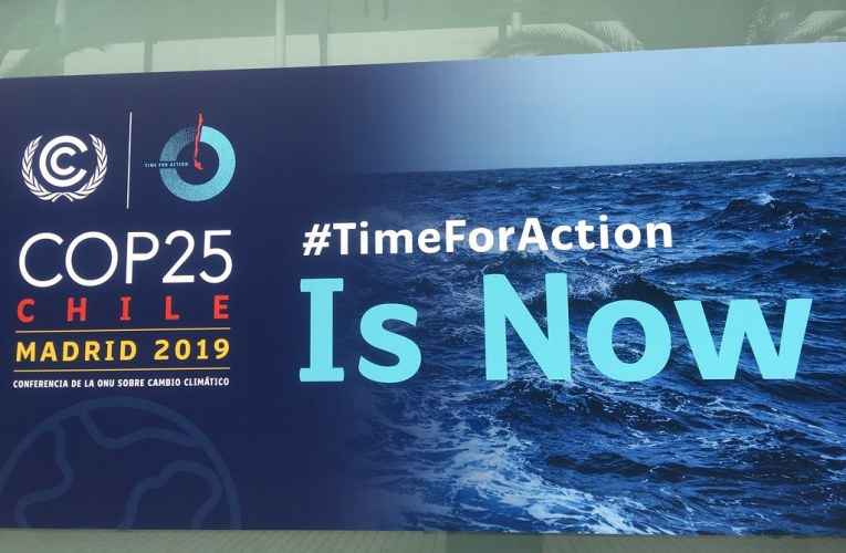 An Early Christmas Present, COP 25 Ends Without Great Results