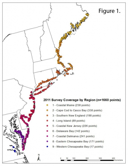 Tidal Marshes Northeast US 2012 Exp