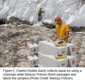 Figure 5: Collecting Basal Ice.