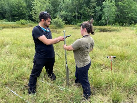 Wetland Coring at the Albany Pine Bush, New York