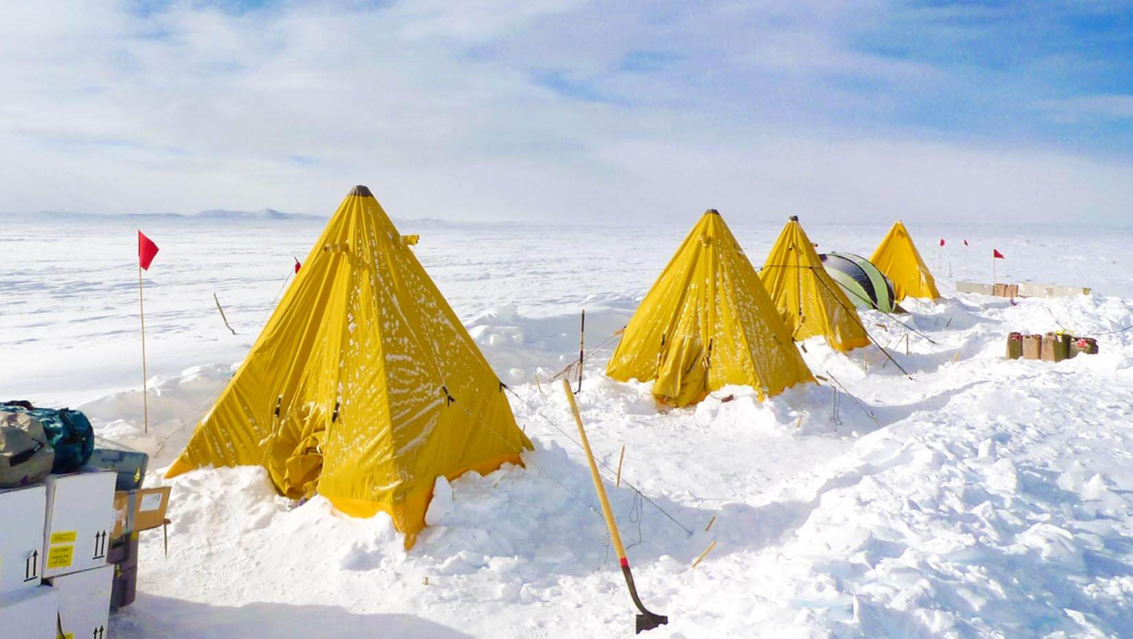 Photo of Yellow Expedition Tents.