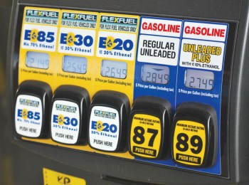 Enviros back Ted Cruz, Republicans on overhaul of ethanol mandate   Science and Technology