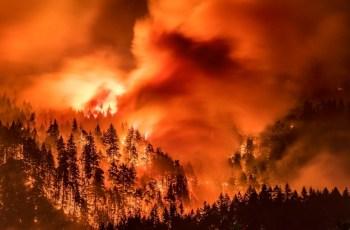 Fire Tornado The Size Of Three Football Fields Is Barn-Burning Across California