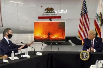 newsom trump wildfires