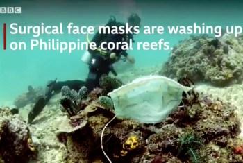 masks coral reef